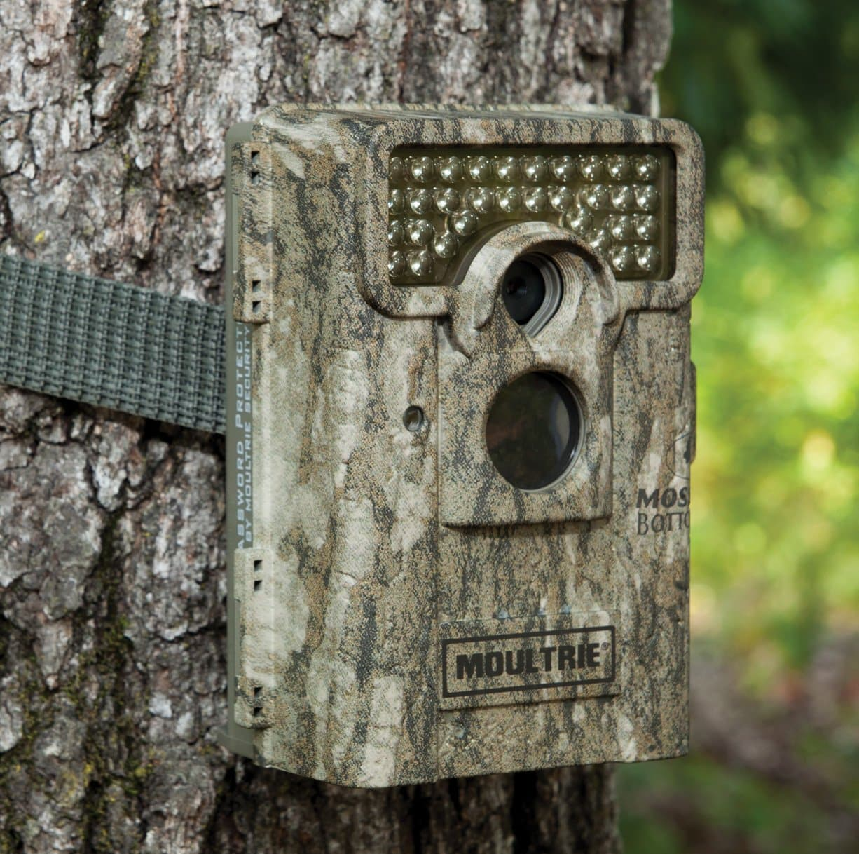 Moultrie M-880 - outside