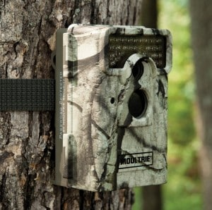 Moultrie M-990i on tree
