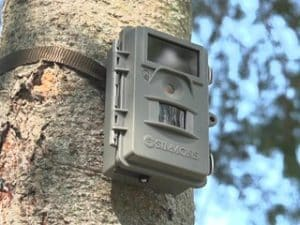Simmons 6 MP ProHunter No Glow LED Trail Camera with Night Vision